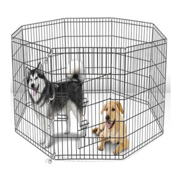 Dog Kennel Walmart