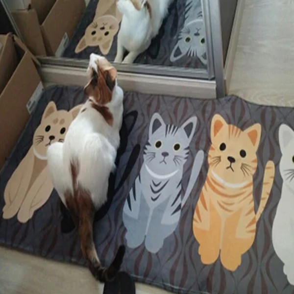Cat Floor Mat 1