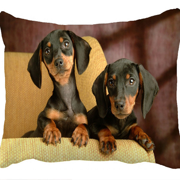 Dachshund Cushion Cover 1
