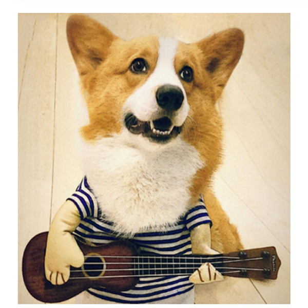 Pet Guitar Costume 2