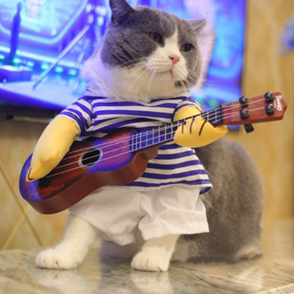 Pet Guitar Costume 3