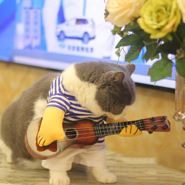 Pet Guitar Costume 4