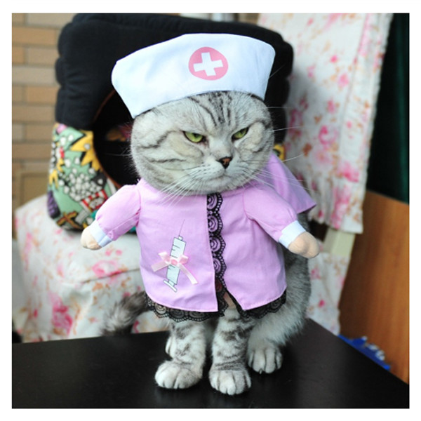 Pet Nurse Costume
