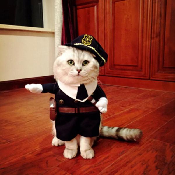 Pet Police Costume 2