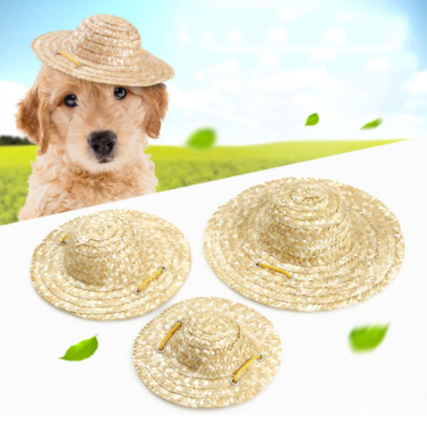 Pet Sombrero Hat 3