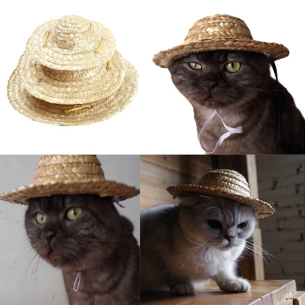 Pet Sombrero Hat 4
