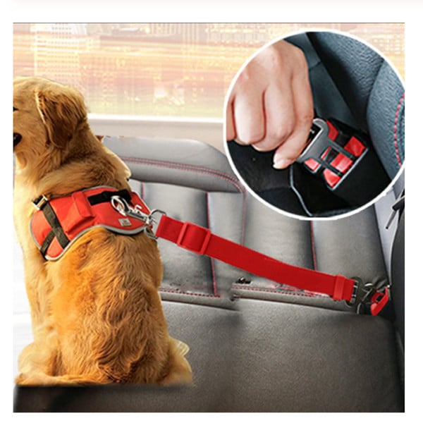 Dog Leash Seat Belt