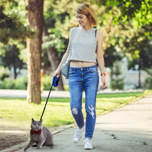 Dog Cat Retractable Leash 2